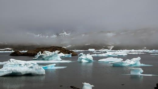 definición de tundra