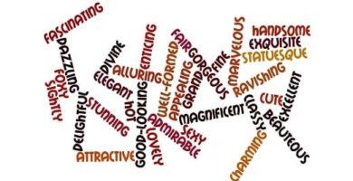 Definición De Adjetivos Calificativos